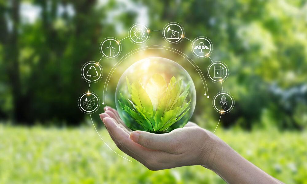אנרגיה ירוקה - למה היא חשובה?
